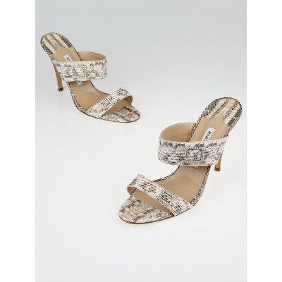Manolo Blahnik Beige Python Jeweled Slide Sandals Size 10/40.5