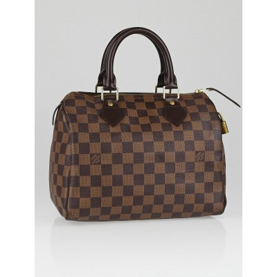 Louis Vuitton Damier Canvas Speedy 25 Bag