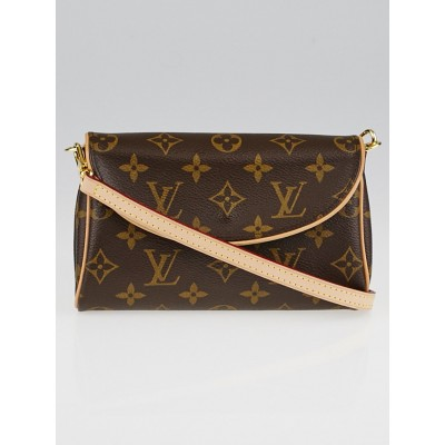 Louis Vuitton Monogram Canvas Pochette Friendly Bag