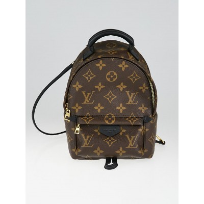 Louis Vuitton Monogram Canvas Palm Springs Backpack Mini Bag