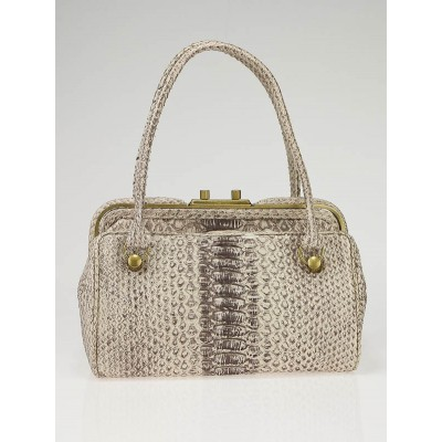 Bottega Veneta Python Frame Top Satchel Bag