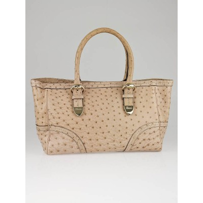 Gucci Limited Edition Nude Ostrich Leather Signoria Medium Tote Bag