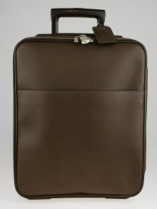 Louis Vuitton Grizzli Taiga Leather Pegase 45 Business Suitcase
