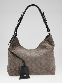 Louis Vuitton Granit Suede Monogram Antheia Hobo PM Bag